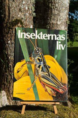Insekternas-liv